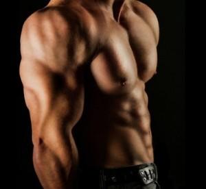 Kreatin Vergleich - Startseite Muskeln Creatin
